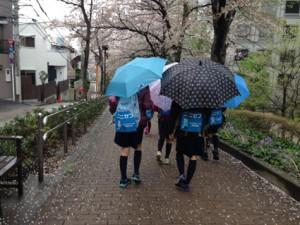 傘をさして目黒川沿いを歩きます
